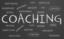 system coaching